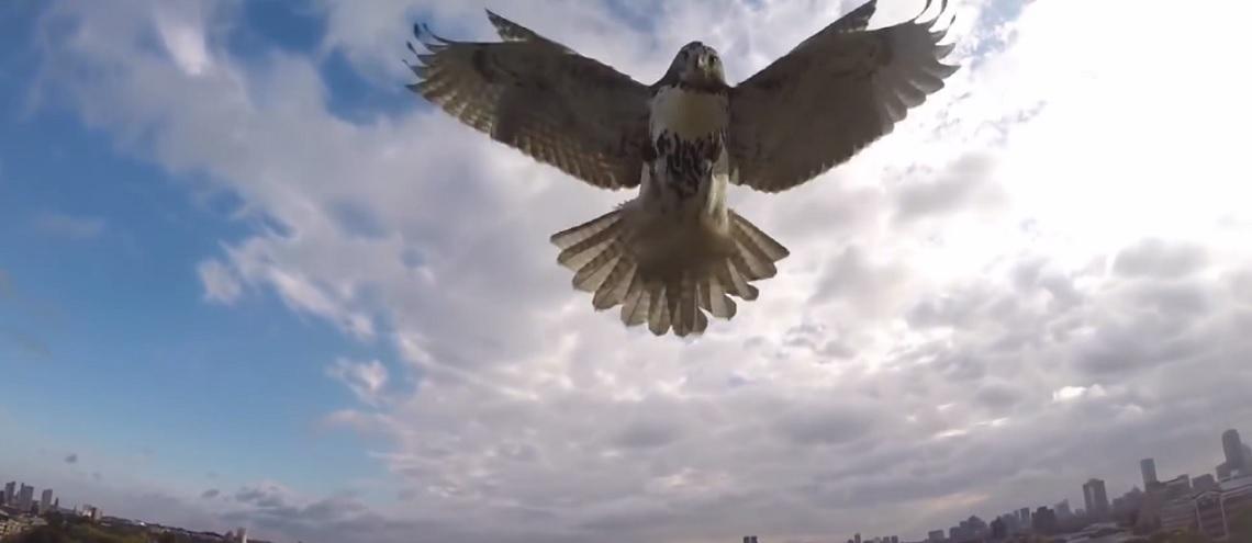 Spektakuläre Drohnen Crashs